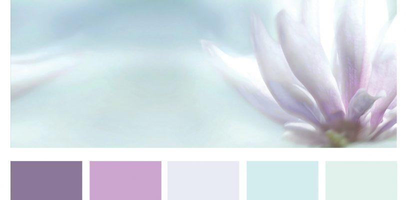 Palette Pastel Dreams