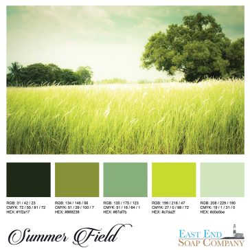 Color Inspiration – July, 2016