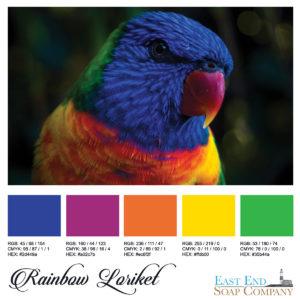 swatches_rainbow_loriket