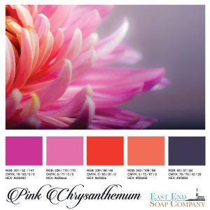swatches_pink_chrysanthemum
